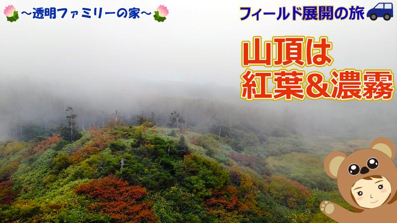 画像:呪符フィールド展開、山頂の紅葉と濃霧